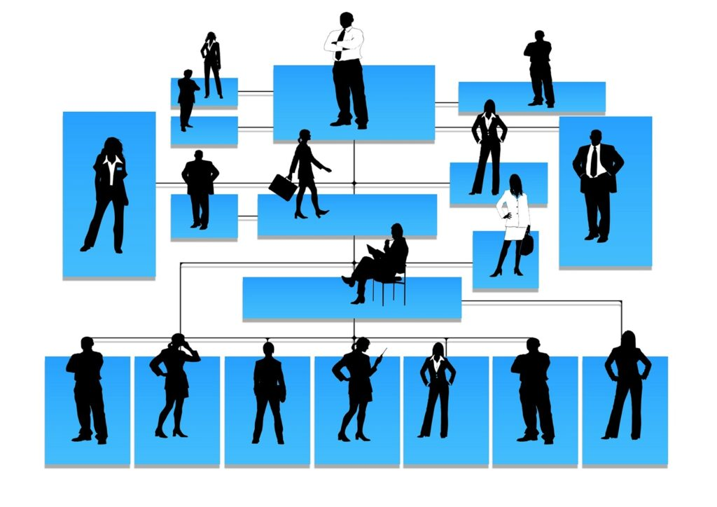 Organizational Structure: 04 Types of Organizational Structures in Business